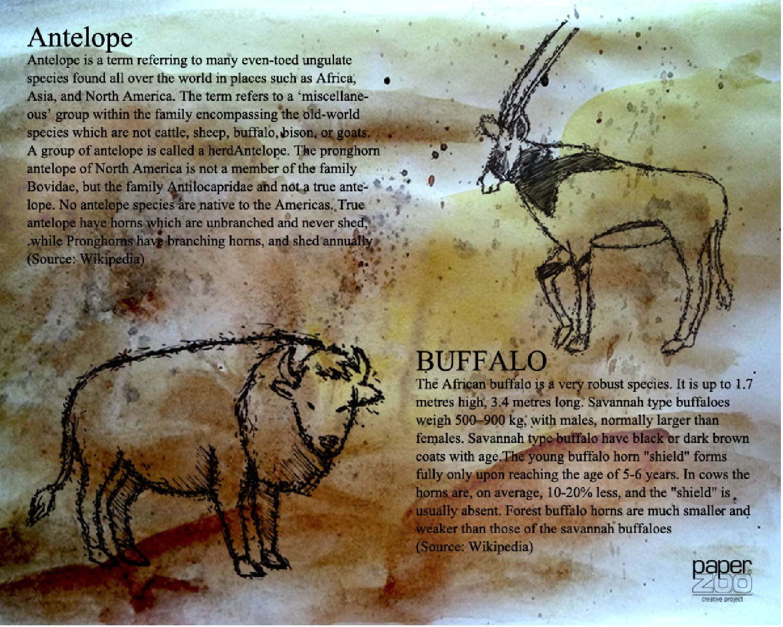 Zoo Paper-0